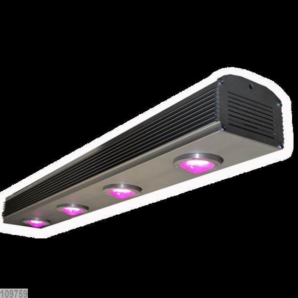PlantLED Melior, LED-Leuchte, 320 W